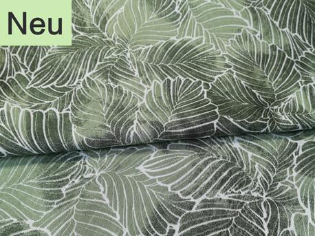 Blätter grün Farn Meerschweinchen Laub Wald Natur