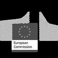 Logo_European_Commission_blackWhite.png