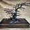 Thumbnail: Hand Forged Iron Bonsai Tree