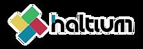 Logo Haltium linea blanca 4px.png