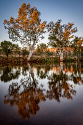 Sandy Creek Reflections