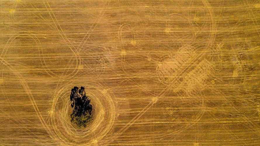 Aerial Swirls