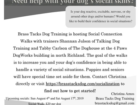 Upcoming Social Walks Flyer