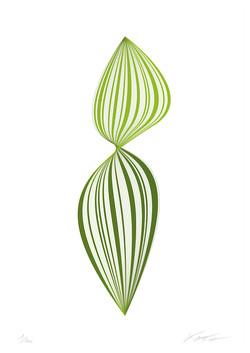 Leaf Chlorophyll