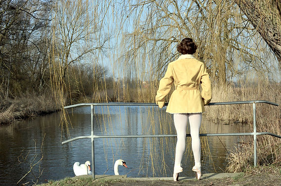 swan lake performance for swans.JPG