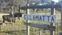 Ellamatta