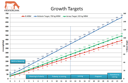 Heiferlink Growth Chart