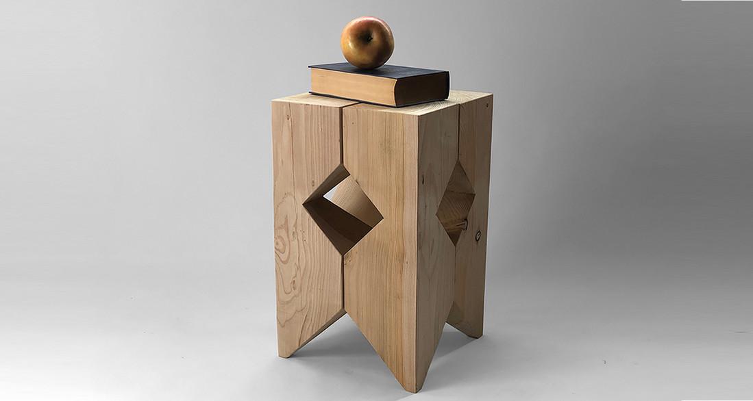 TABURTE ROMBO WEB.jpgFunctional sculpture_Domestic-Wild