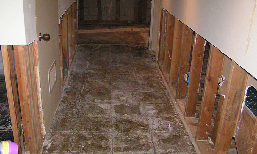 water-damaged wood floors