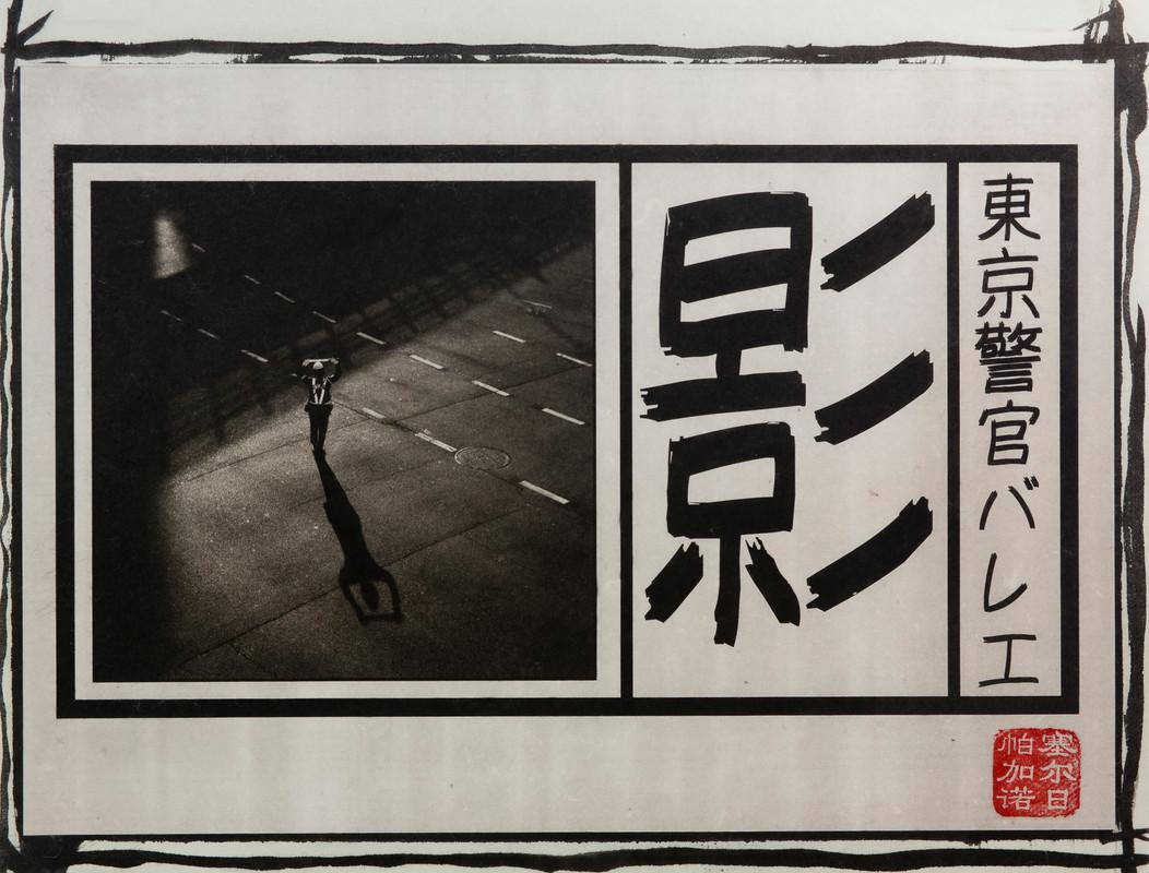 japanpld03.jpg