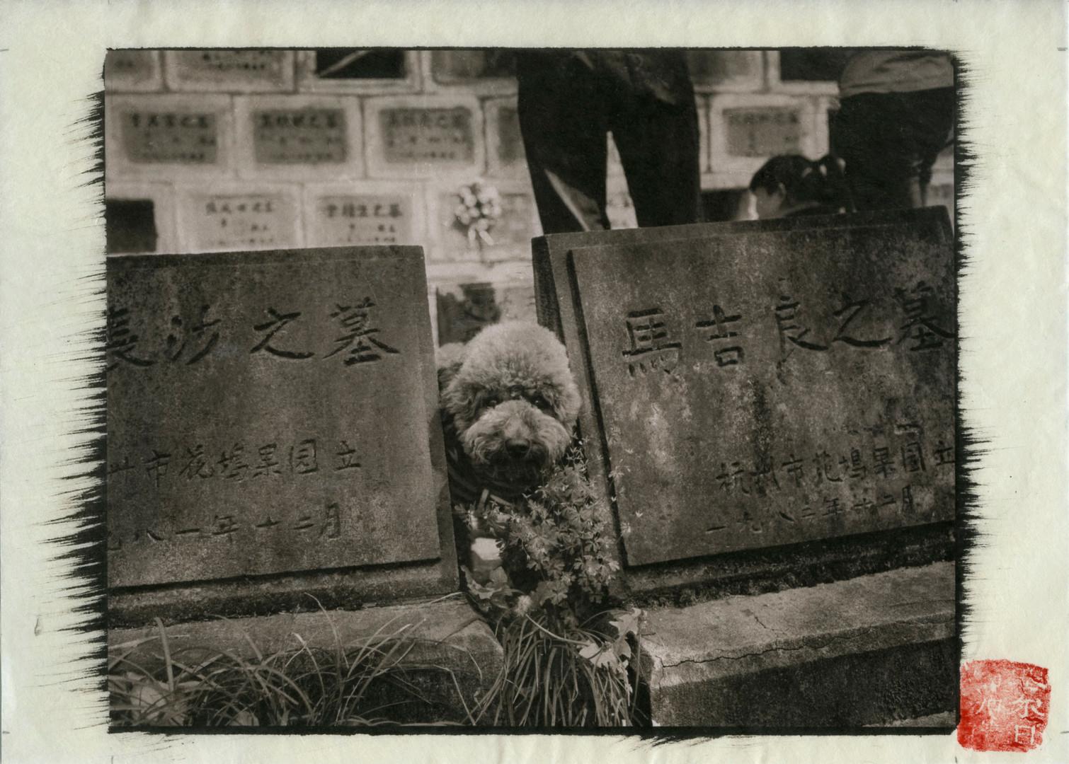Hangzhou07.jpg