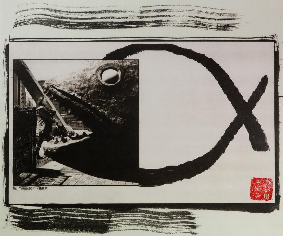 japanpld18.jpg