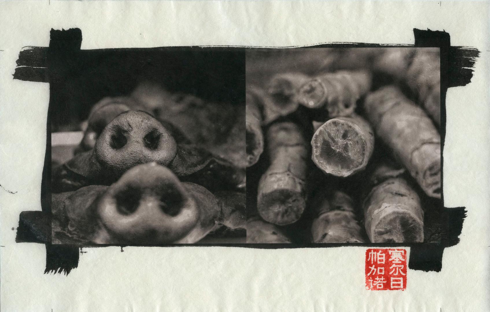Chongqing30.jpg