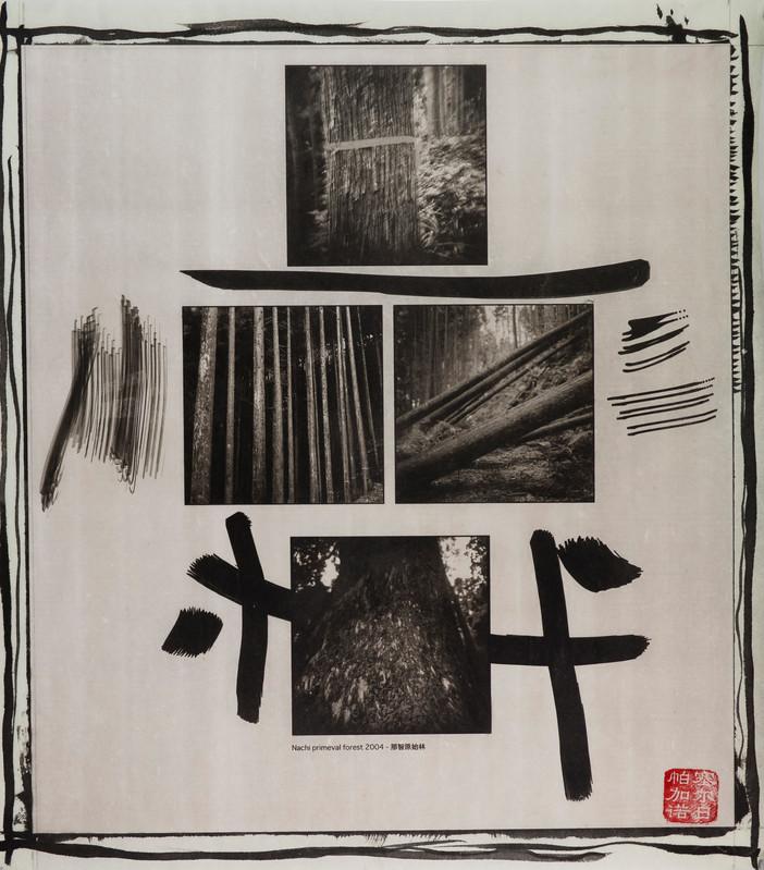 japanpld48.jpg