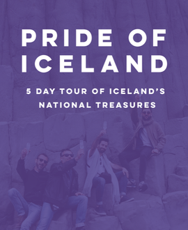 Iceland Gay Pride tour