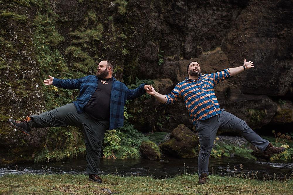 Bear proposal in Iceland