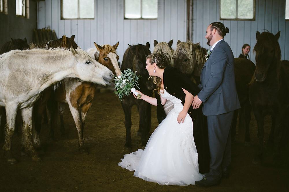 Iceland Wedding photo by Kristina Petra Wedding Photographer, Pink Iceland's partner