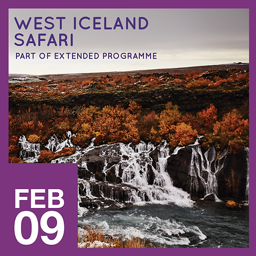 West Iceland Safari