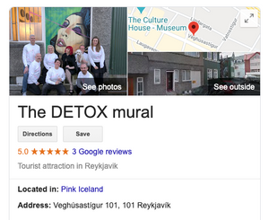 The Detox Mural in Reykjavik at the Pink Iceland office