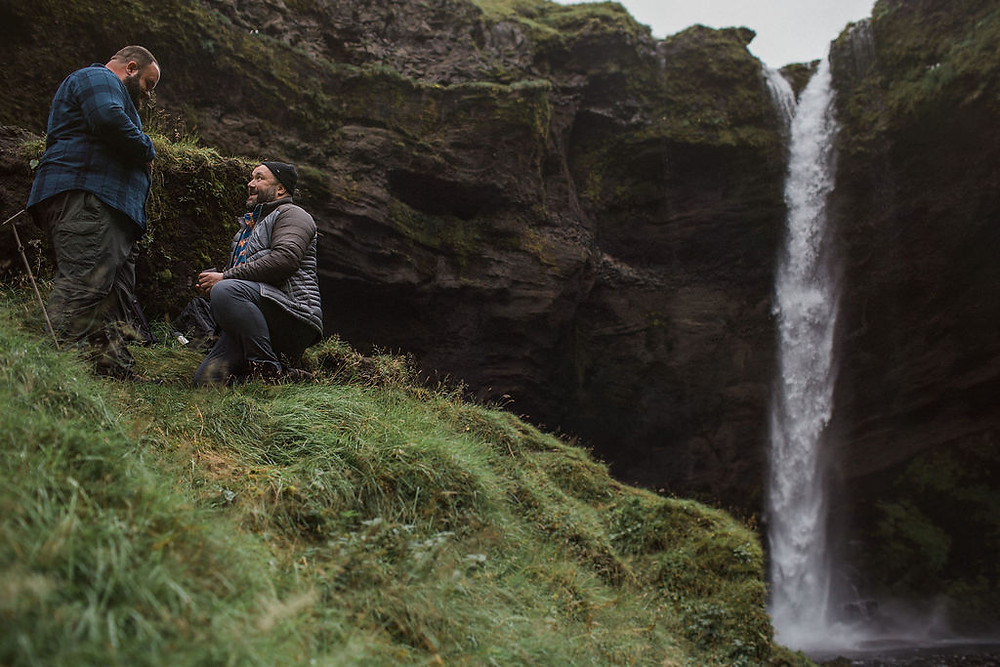 Iceland bear engagement