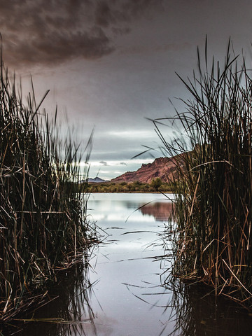 Salt River Mysteries
