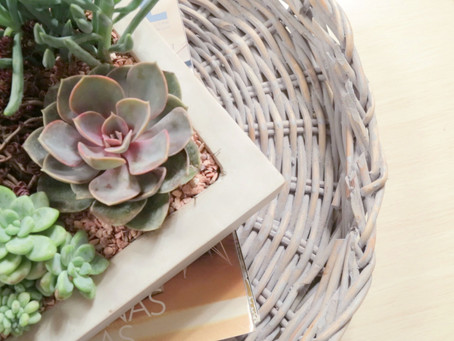 HOW TO STYLE AN INDOOR SUCCULENT GARDEN