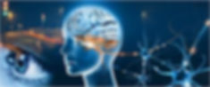 neuro-ophthalmology.jpg