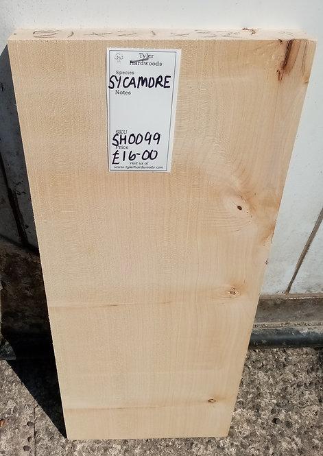Sycamore Board SH0099