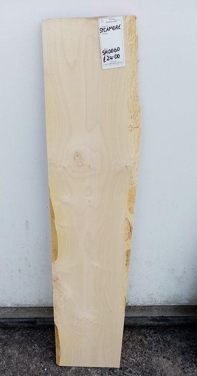 Sycamore Board SH0060