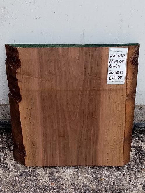 American Black Walnut Board WA0077