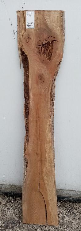 Elm Board EH0029