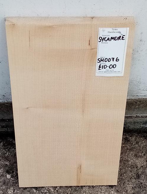 Sycamore Board SH0076