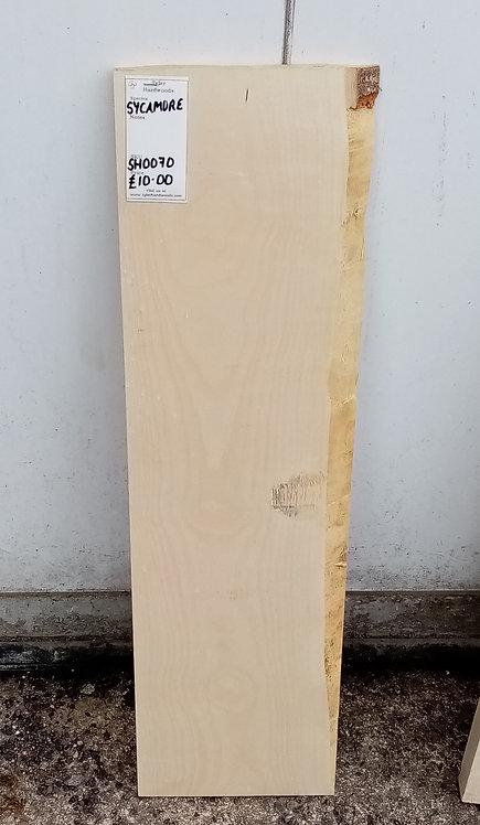 Sycamore Board SH0070
