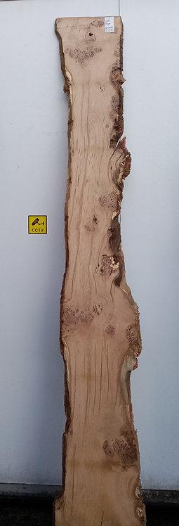 Pippy Oak Board OH0082