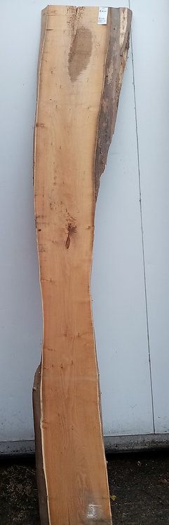 Acacia Board AC0001