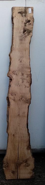 Pippy Oak Board OH0084