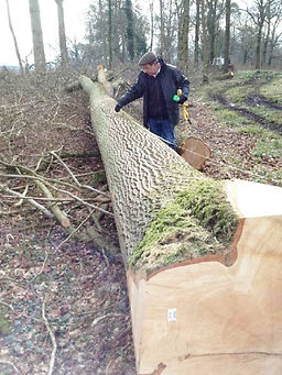 English Ash Log measure timber sawn dried