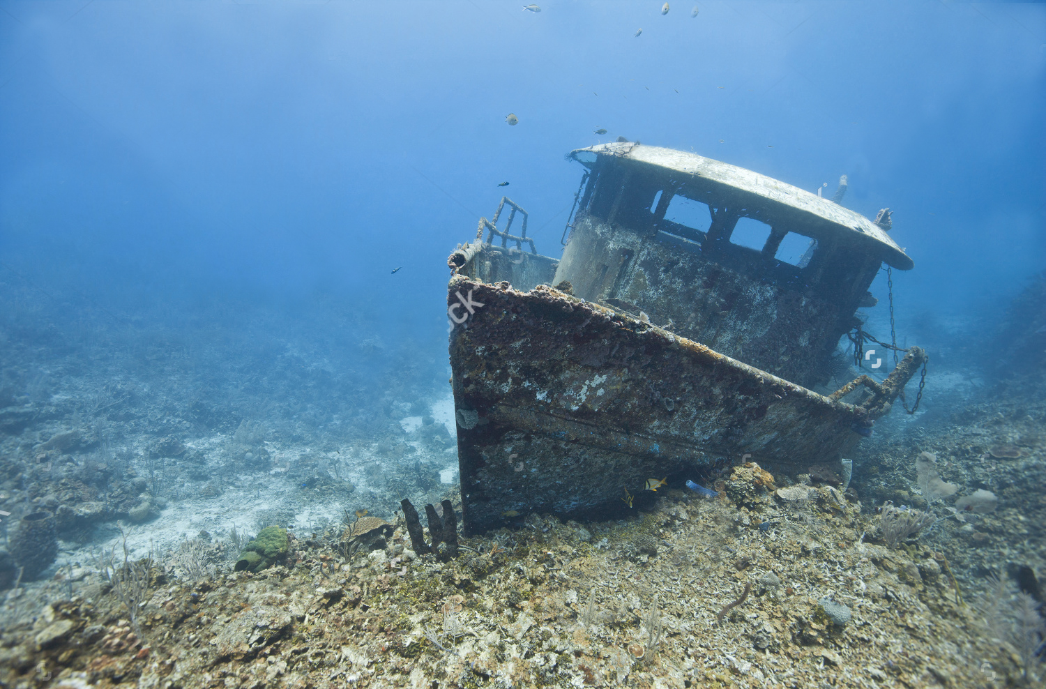 stock-photo-the-wreck-of-the-mr-bud-a-former-shrimping-boat-scuttled-off-the-island-of-roatan-hondur