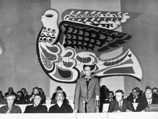 Den internationella fredsrådet i Stockholm den 1 november 1954