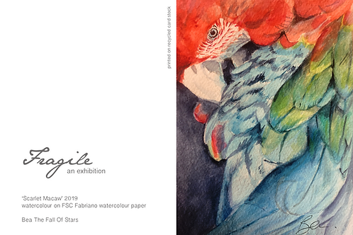 Gift Card - Scarlet Macaw