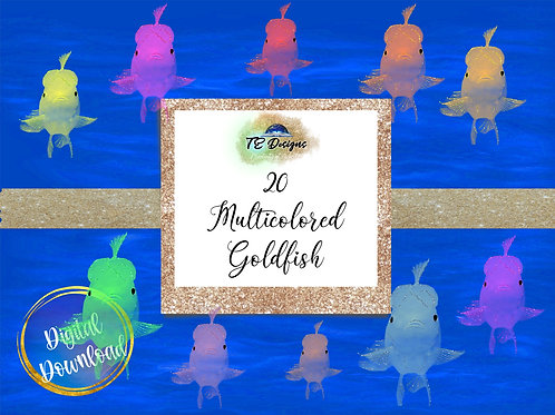 Multicoloured Goldfish Clipart