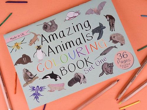 Amazing animals colouring book