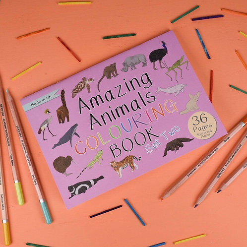 Amazing animals colouring book (set two)
