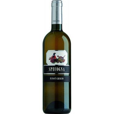 Specogna Pinot Grigio 2018 思沛娜酒莊灰皮諾白酒