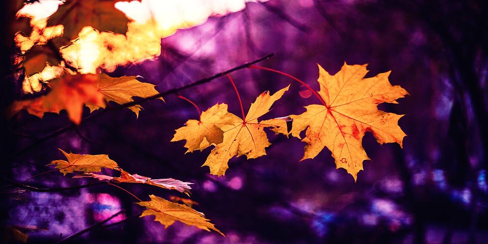 September Fall Equinox Session