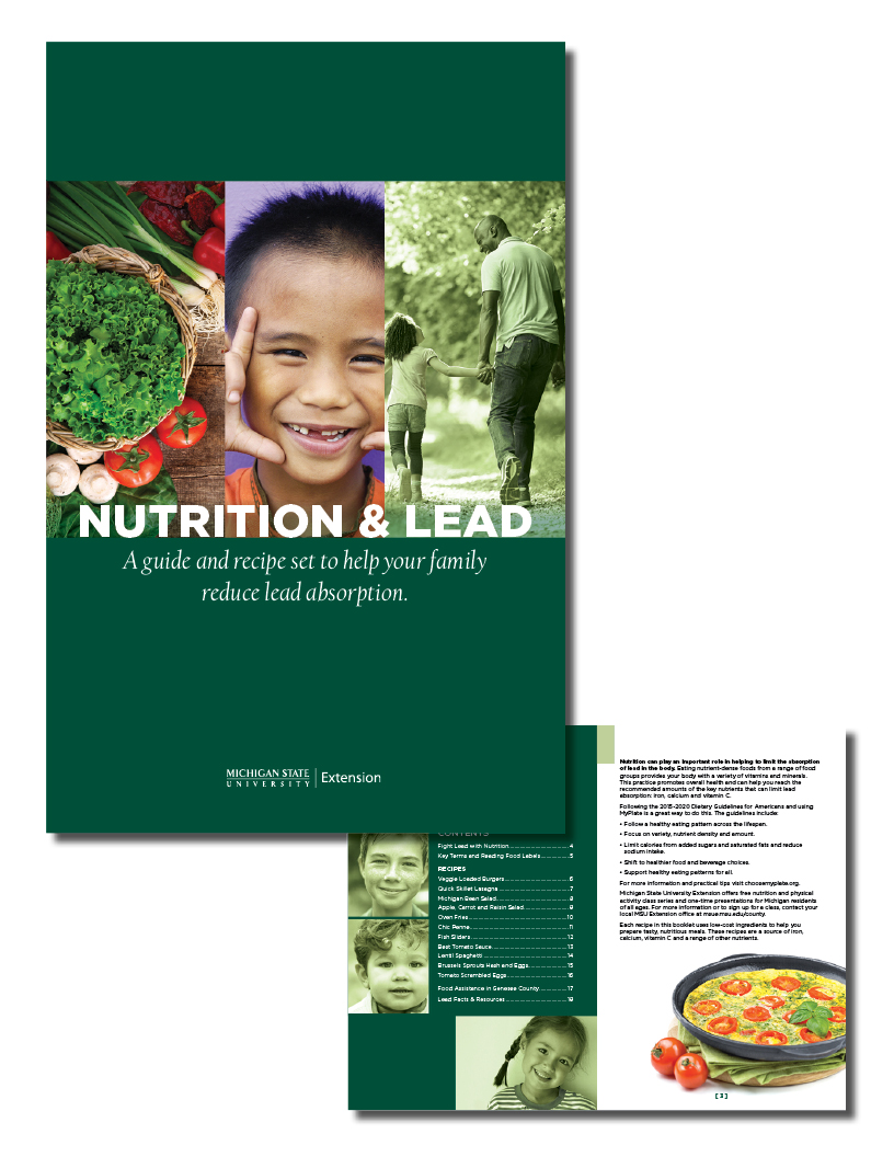 MSUE Flint lead booklet
