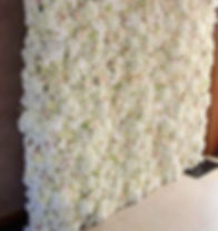 sussex-discos-flower-wall.jpg