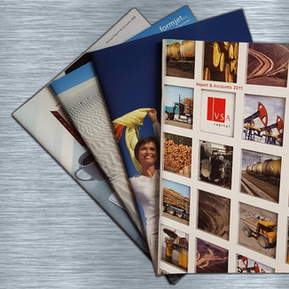 Annual Reports for VSA Capital