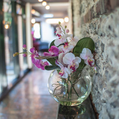 Location Photography for The Star Inn in Alfriston