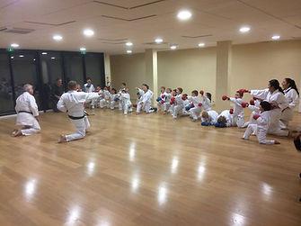 belle saison karate bastia 2018.jpg